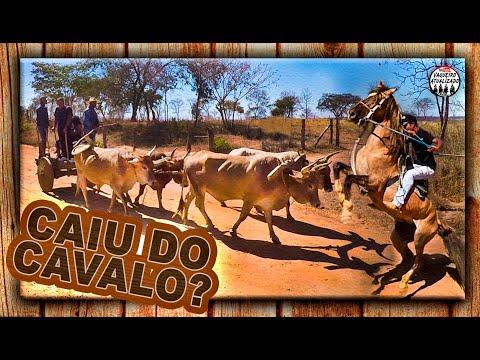 Festa Carro De Boi 2ª Parte Caiu Do Cavalo?