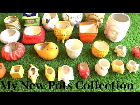 New ceramic pots collection with price details||Backyard Gardening