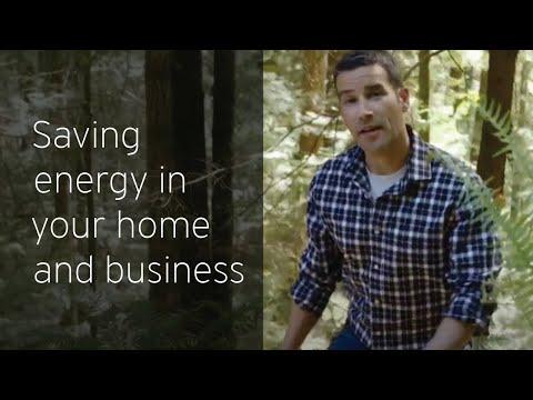 Conservation & Energy Management team