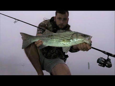 Foggy Morning Striped Bass!!
