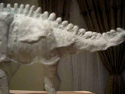 Dicraeosaurus sauropod