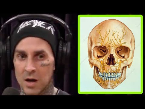 "Travis Barker is Fighting the ""Suicide Disease"" 