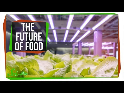 3 Ways We Could Transform the Future of Food