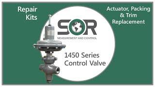 1450 Series Repair Kits - Actuator, Packing, & Trim Replacement