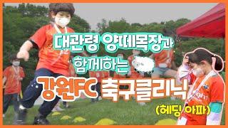 이영표X한국영X이광연 세계 최초(?) 양떼목장에서 축구 클리닉하다!