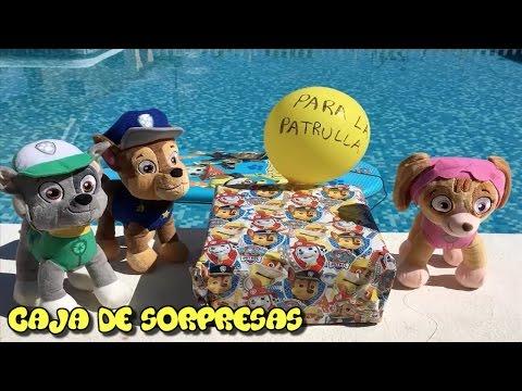 Patrulla canina español y la caja sorpresa en la piscina/Videos Paw Patrol Español Cap 34