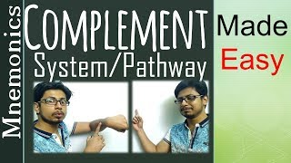 Complement pathway made easy