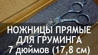 Ножницы для груминга прямые 7 дюймов (17,8 см) CY-35(http://thezoo.ru/ Ножницы для стрижки собак прямые 7 дюймов (17,8 см) CY-35 Недорогие и качественные ножницы для груминг..., 2013-11-27T21:55:08.000Z)