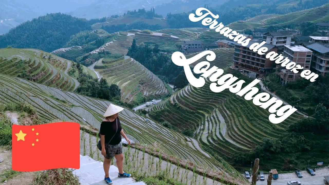 Los Cultivos De Arroz En Zhangjiajie