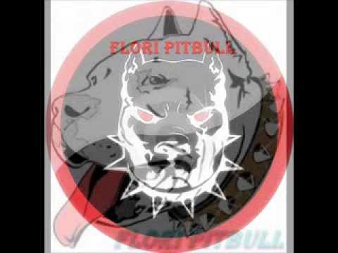 flori pitbull logos remix jd
