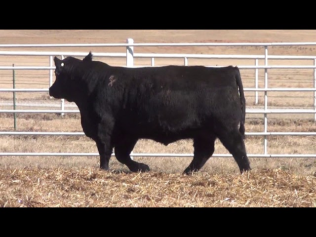 Express Ranches Lot 92