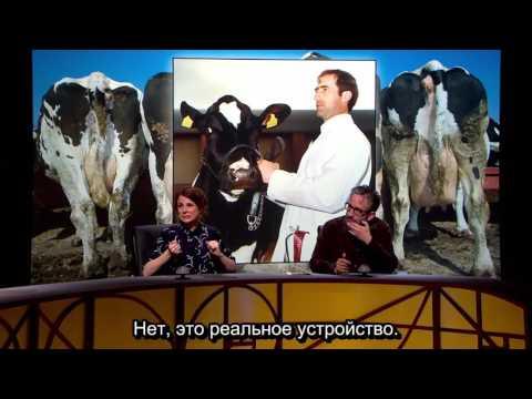 N Series Episode 10 Nature Nurture XL rus sub Cariad Lloyd, Ross Noble, David Baddiel