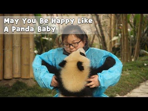 May You Be Happy Like A Panda Baby | iPanda