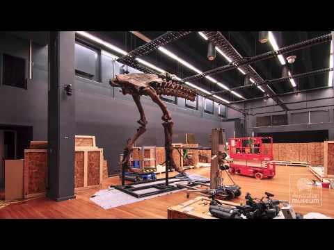 Tyrannosaurs: Meet Scotty (Timelapse)