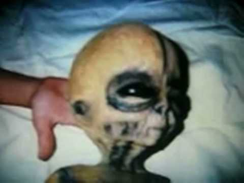 aliens don t exist 1 if the government knew, or a number of people knew aliens existed, why aren't there more people coming forward trying to capitalize on it by selling books, movie deals, or interview time.