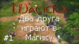 Magicka: Два друга играют в Магику / Эпизод 1 [ВЕЧЕРИНКА!?]
