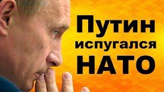 Путин испугался НАТО