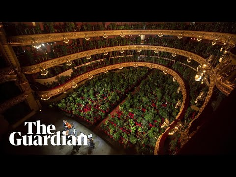 Barcelona-opera-reopens-with-performance-for-more-than-2000-potted-plants