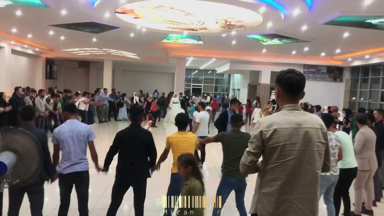 BÖYLESİ BİR DÜĞÜN YOK Miran Mir - Bingöl Karlıova Merkez  #AşiretDüğünü #2021