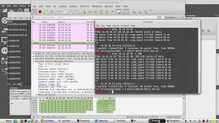 ICMP packet format explained with Wireshark   IP Header Ethernet ICMP Header   timestamp Linux
