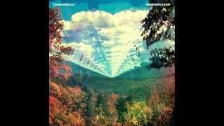 Tame Impala - The Bold Arrow of Time (Demo Version)