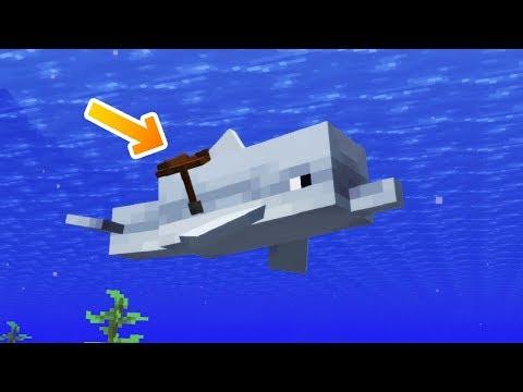 Как приручить дельфина в майнкрафте