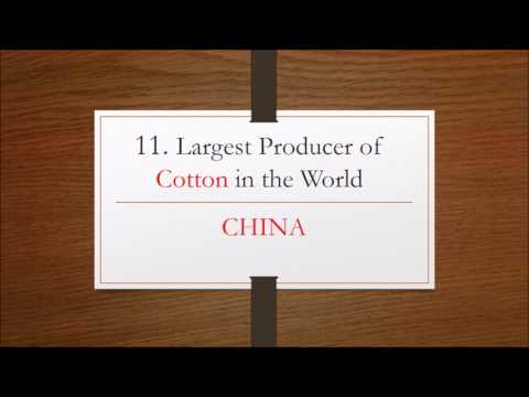 25 Largest Crop Producers in the World- Geography GK