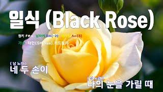 [은성 반주기] 일식(Black Rose) - 태민(S…