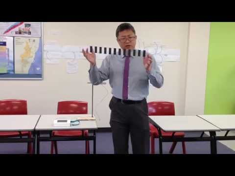 HSC Physics - Using Data Logger To Measure Earth's gravity