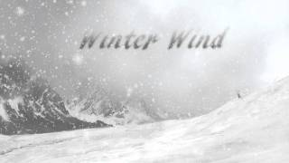 Sonic Flux - Winter Wind