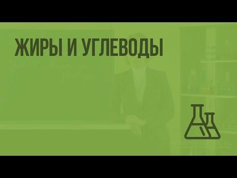 Видеоурок углеводы 9 класс химия