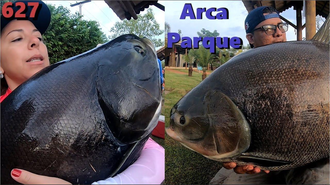 Muita adrenalina com a Equipe Fishingtur com os Tambas do Arca Parque - Programa Fishingtur 627