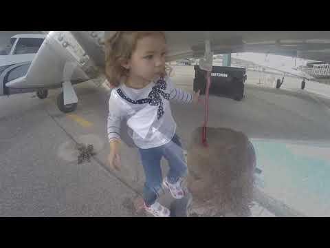 2 year old Pilot . Amelia