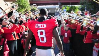 Take the Dawg Walk with UGA