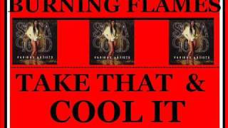 Burning Flames - Take That And Cool It.