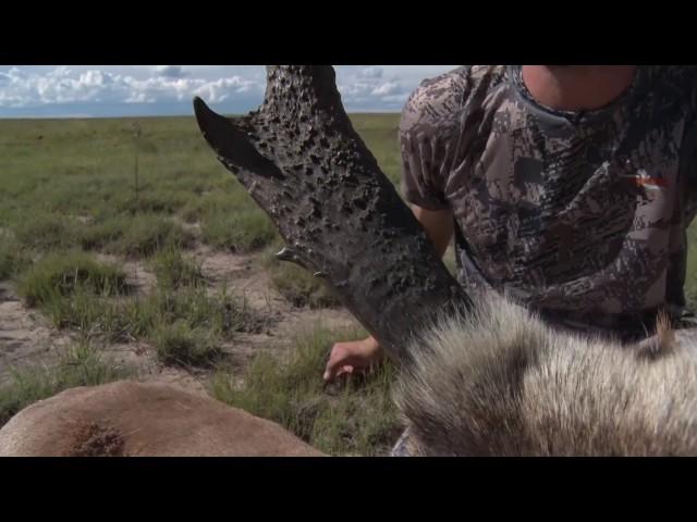 BIG New Mexico Antelope-S4E1 Seg4
