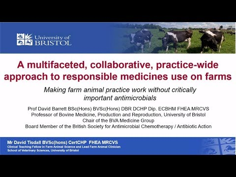 A multifaceted, collaborative, practice-wide approach to responsible medicines use on farms