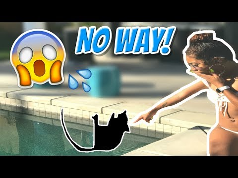 YOU WON'T BELIEVE WHAT WE FOUND IN OUR POOL! | ChandlerAlexisVlogs #65