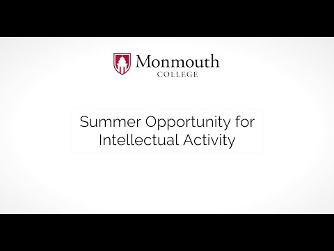 Summer Opportunity for Intellectual Activity