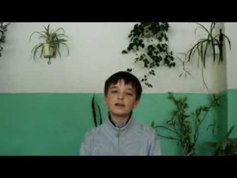 Изображение предпросмотра прочтения – СергейКлюев читает произведение «Потешки Лиса по лесу бежала» (Русский фольклор )