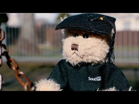 Bearly Beloved | University of Southampton