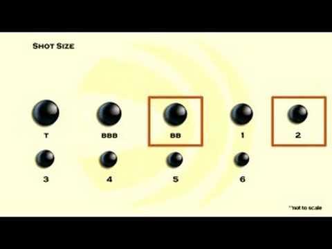 Choosing Shot Size - YouTube