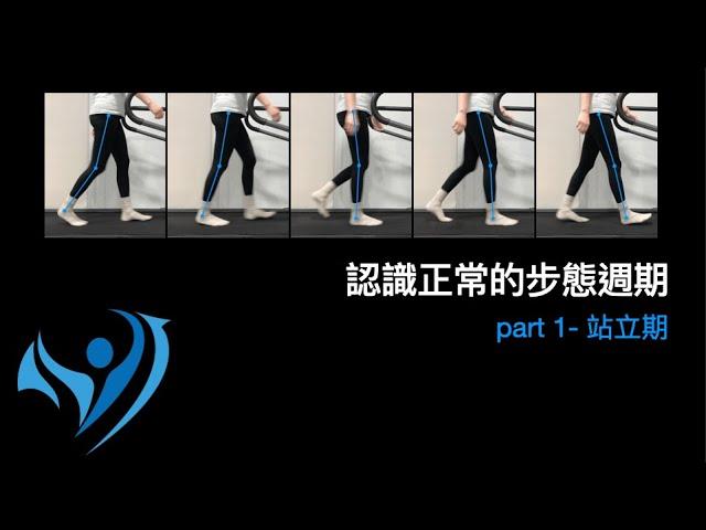 脊椎側彎行走步態訓練1-1正常步態週期-站立期