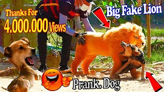 Big Fake Lion vs Prank Dogs - Must Watch Funny Video Will Make You Lough