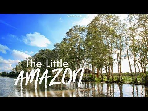 Little Amazon Desa Jeriji Bangka Selatan