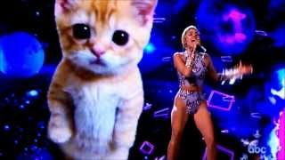 Miley Cyrus - Wrecking Ball AMA Performance 2013 (Full Live Performance) - Cat Theme