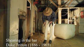 Shearing in the bar