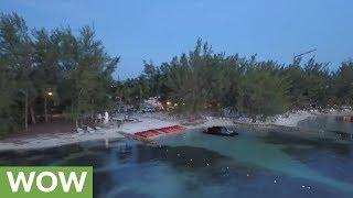 Drone footage shows stingrays hunting on Grand Cayman Island