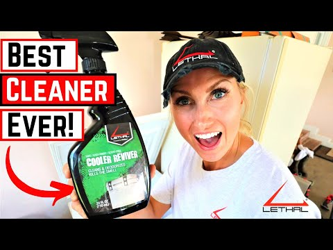 Best Way To Clean Your Freezer | LETHAL PRODUCTS | Cooler Reviver