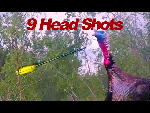 "Turkey ""HEAD SHOTS"", BOW!!"